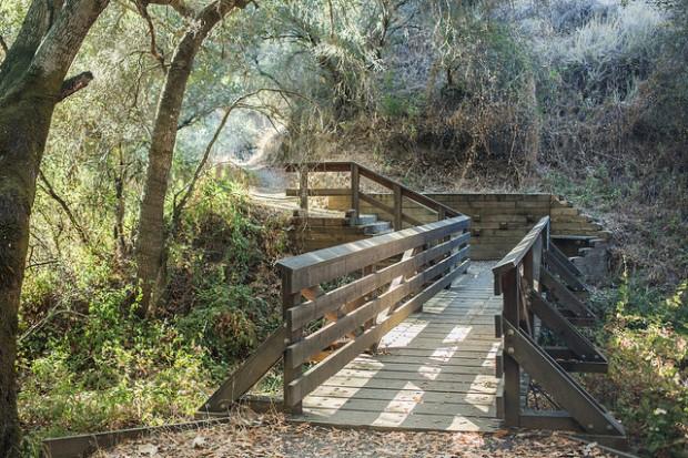 Stevens Creek Tony Look Trail